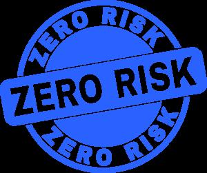 Zero Risk Pay Monthly Web Design